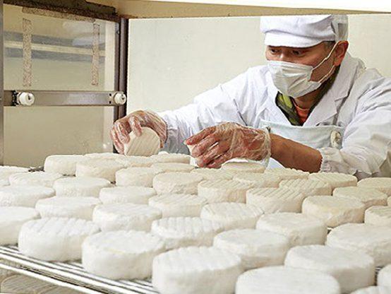 ありがとうサービス_内子町のチーズ工房